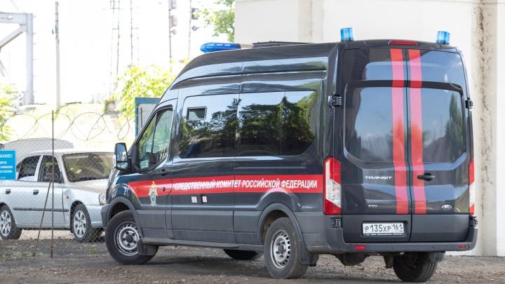 Ростовские следователи разыскивают насильника: публикуем фоторобот