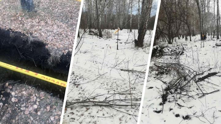 В селе Тюменского района назревает скандал из-за земель около лыжной базы