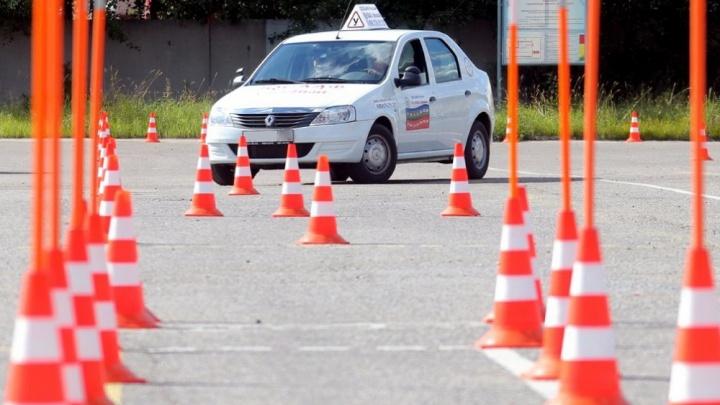 ГИБДД Зауралья возобновляет прием экзаменов на получение водительских прав