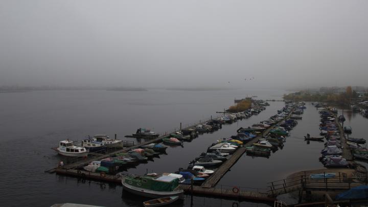В МЧС предупредили о заморозках в нескольких районах Архангельской области 13 июня