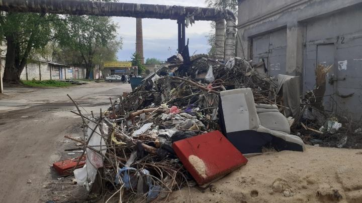 «Незабываемые ощущения гарантируем»: жители поселка Ангарский потеряли надежду жить на чистой улице