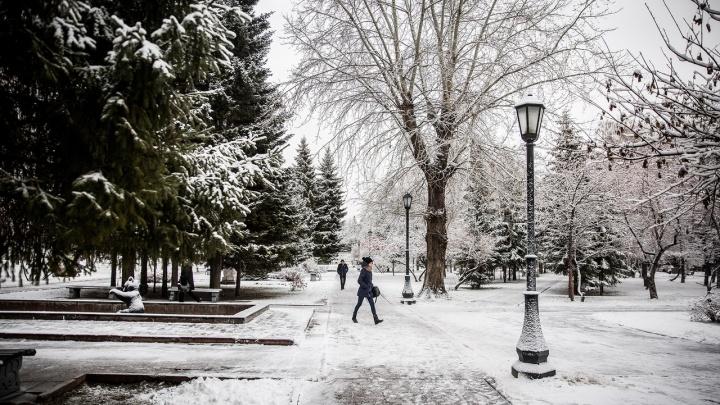 Какой будет последняя неделя ноября? Изучаем прогноз погоды в Новосибирске