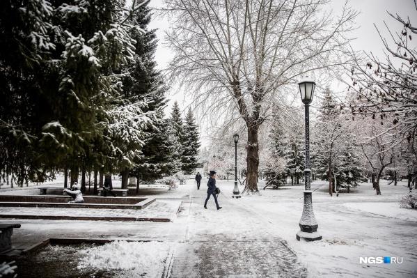 В ночь на субботу в Новосибирске пройдет снег