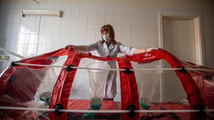 Показываем капсулы для перевозки людей с коронавирусом — 10 кадров о работе скорой в новых условиях