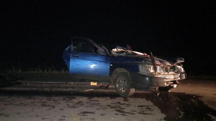 На пьяного водителя, сбившего насмерть три лошади в Башкирии, завели уголовное дело