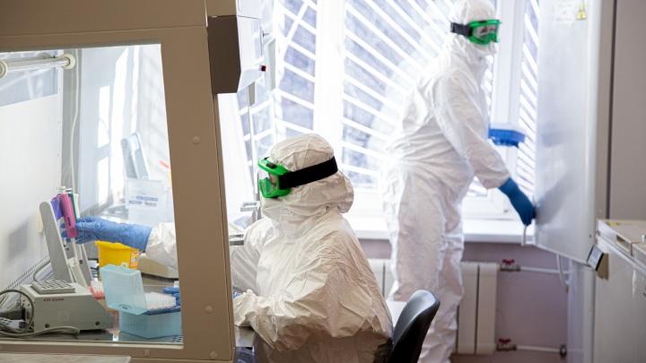 В Самарской области снова увеличилось число заболевших коронавирусом