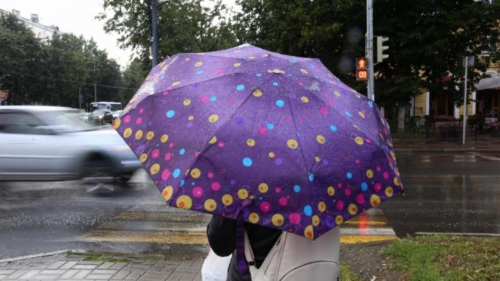 Стихия вот-вот обрушится: синоптики рассказали, когда ярославцам ждать дождь