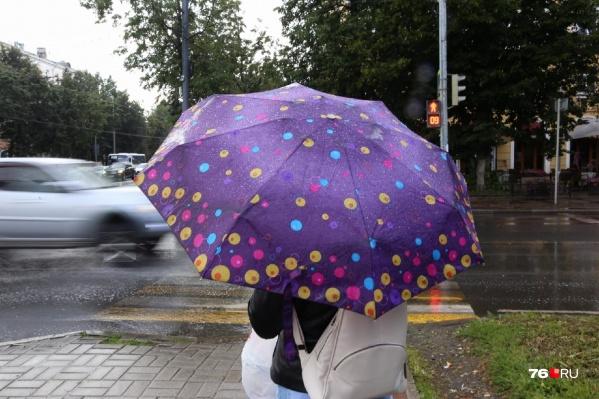 В ближайшие дни ярославцам точно потребуются зонты