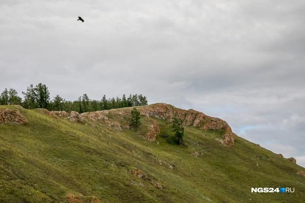 Торгашинский хребет популярен у красноярцев