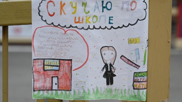 Ростовские школьники соскучились по урокам: фоторепортаж из рисунков на заборе