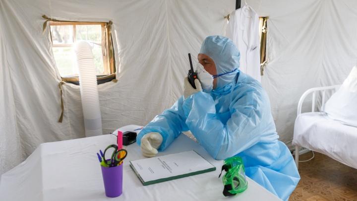 Еще один пациент умер, 88 заболели: в Волгограде и области стремительно растет число больных COVID-19
