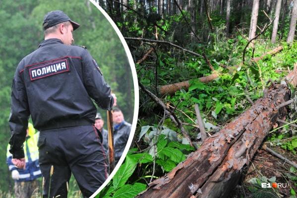 Полиция ехала на вызов о лесорубах на квадроциклах, но их не нашли и взяли в оборот Анатолия на тракторе