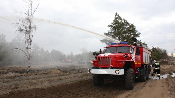Пожары в Волгоградской области уничтожили 300 гектаров леса
