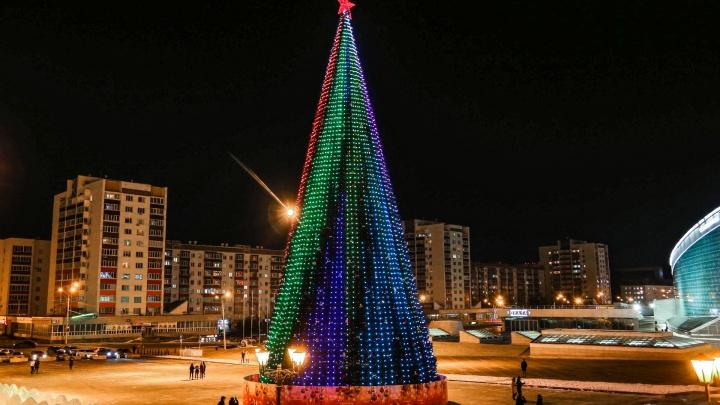 Власти Уфы отказались покупать новогоднюю елку за 18,7 миллиона рублей
