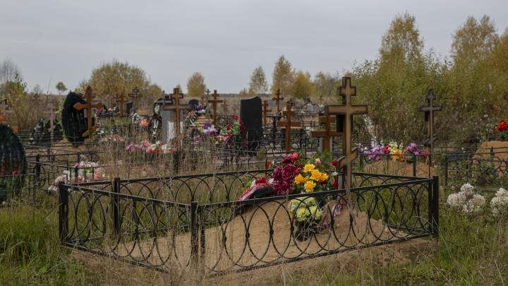 Новое кладбище в Ярославле хотят построить на земле Минобороны