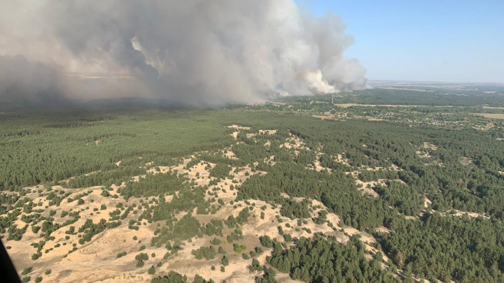 Как минимум один человек погиб на пожарах в Ростовской области