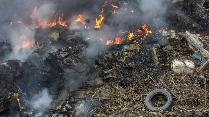 В Волгограде тушат крупный пожар в русле реки Царицы