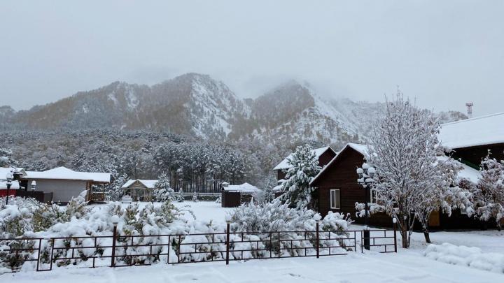 «Приехали осенью, проснулись зимой»: на Алтае за ночь выпал снег