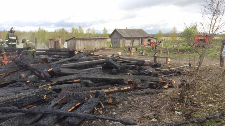 Пепелище: фото с места пожара, где трое малышей погибли на глазах у матери