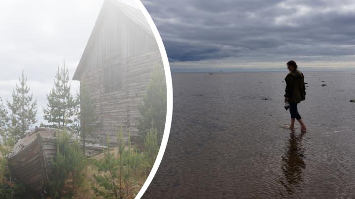 Записки с Белого моря: как экоактивистки заглянули в деревенский пункт приема мусора. День первый