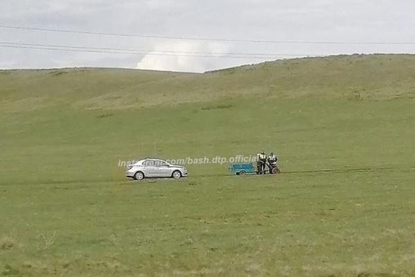 Дедушка, по словам сотрудников ГИБДД, резко съехал с дороги и прибавил скорость