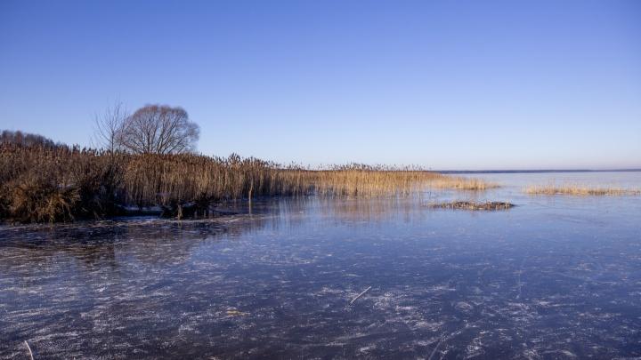 В Ярославской области власти решили по-тихому протащить проект по застройке национального парка