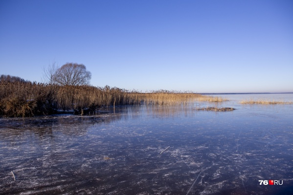 Скоро на берегу Плещеева озера под Переславлем-Залесским могут появиться коттеджи и заборы