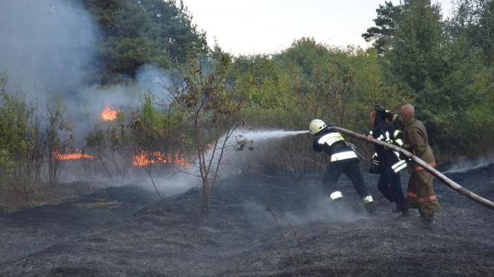 Природный пожар подобрался вплотную к деревне в тайге
