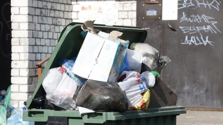 10 мусорных перевозчиков Архангельской области объявили забастовку из-за действий регоператора