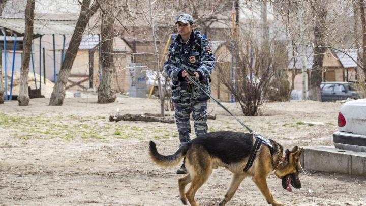 В Волгограде эвакуировали посетителей ТРК «КомсоМОЛЛ»