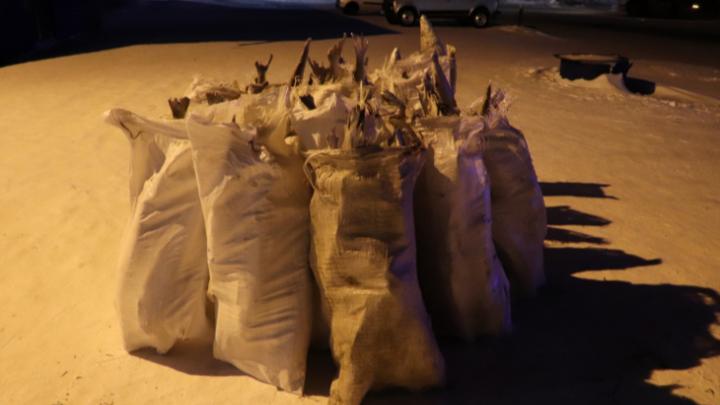 Рыбак на севере края обменял 17 мешков муксуна на три бочки бензина. Ущерб оценили в 2 миллиона