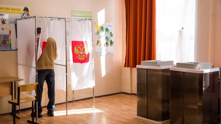 В Ярославле школьников распустят с уроков из-за трёхдневных выборов