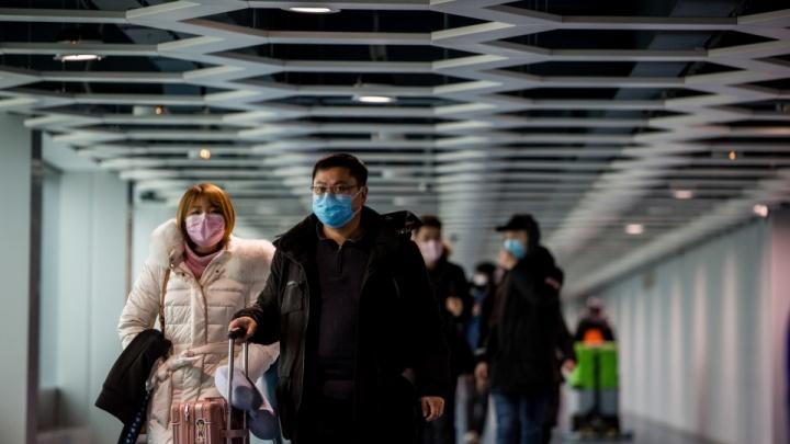 Хроника коронавируса в Новосибирской области: первый заболевший и режим повышенной готовности
