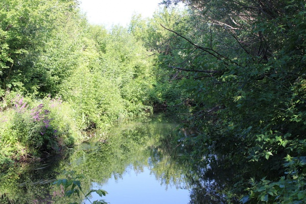 Река Куганак — одна из самых чистых рек Башкирии