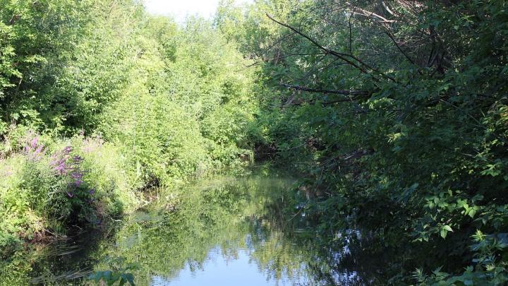 Агропредприятие в Стерлитамаке заплатит полмиллиона рублей за загрязнение реки