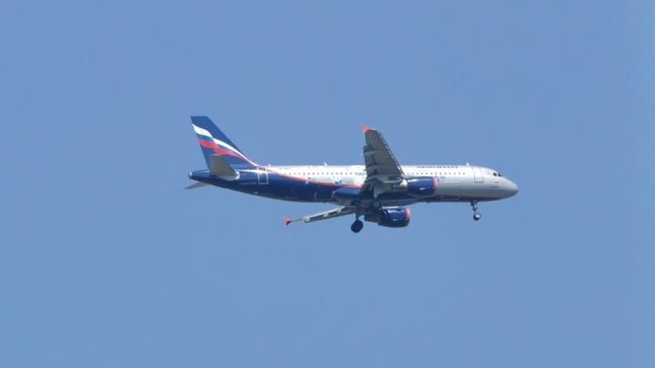 В Екатеринбурге из-за сообщения о минировании садится самолет из Москвы