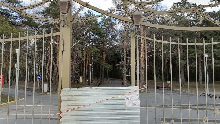 Школьники-нарушители и закрытая Гилевская роща. Всё о коронавирусе 23 апреля
