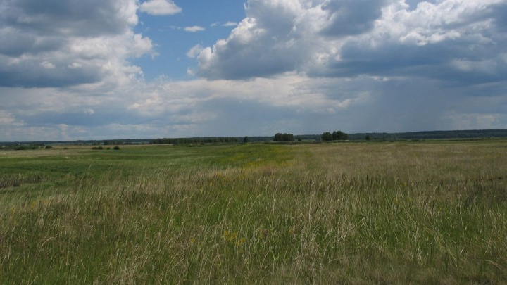 В Курганской области создали сайт, посвященный зауральскому Стоунхенджу