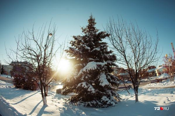 Самым теплым месяцем зимы, судя по всему, может стать декабрь. Ждете снега и главного праздника года?