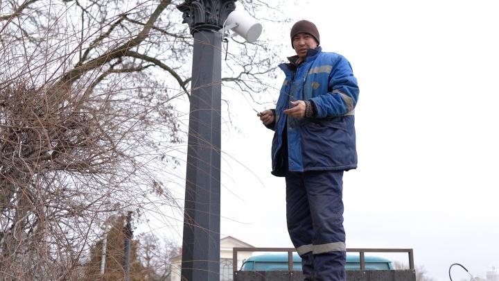 Дешёвый кабак или помощник по жизни: волгоградцев рассорила музыка на Центральной набережной