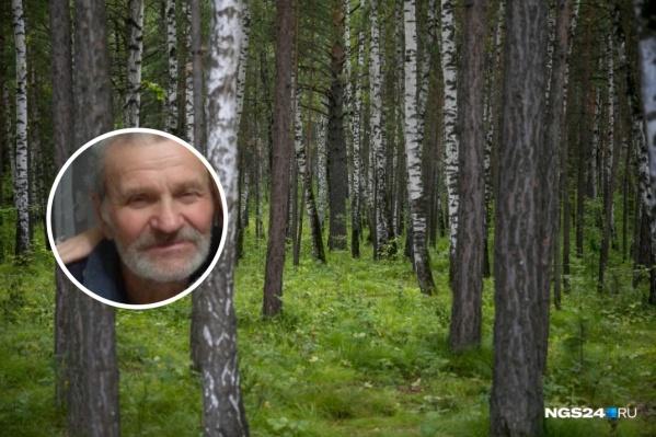 Николай ушел в лес за грибами и больше не выходил на связь