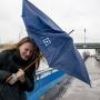Экстренное предупреждение от МЧС: на Ярославль движется гроза и сильный ветер