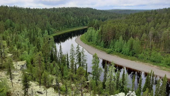 В Архангельской области тихо «порезали» проект запланированных особо охраняемых природных территорий