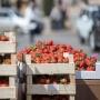 161.RU отвечает: как выбрать в магазине вкусную клубнику?