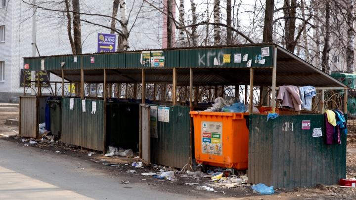 «Мусора стало больше»: мэр рассказал, как приходится убирать Ярославль во время эпидемии COVID-19