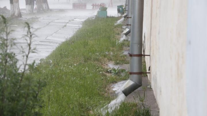 В выходные — без осадков, а в начале второй недели августа в Архангельской области пройдут ливни