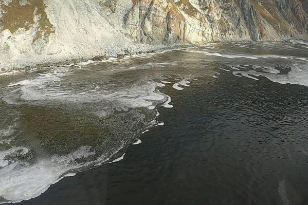 По одной из версий, опасные вещества в бухту принесла река