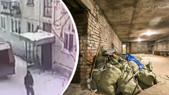 Мужчина освободил собаку, запертую в подвале, и заодно украл оттуда бытовую технику