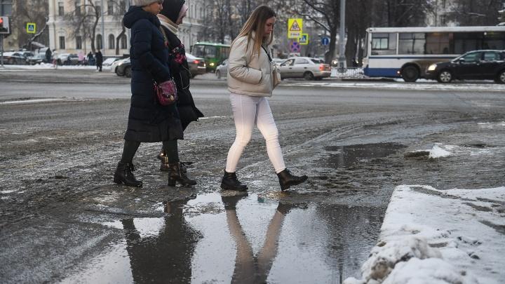 К выходным в Екатеринбурге поднимется ветер до 18 метров в секунду