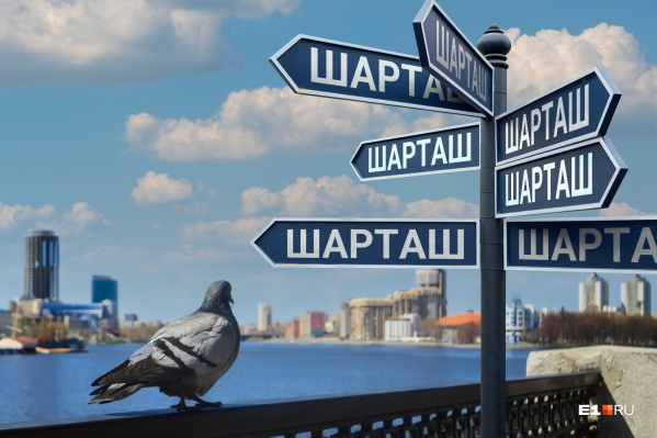 В Екатеринбурге легко запутаться в улицах и остановках
